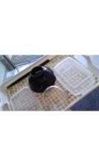 吉田麻梨紗 公式ブログ/調理実習 画像2