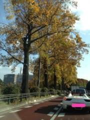 岡田はるこ 公式ブログ/お出かけ♪ 画像1