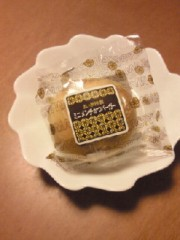 岡田はるこ 公式ブログ/東京は… 画像1