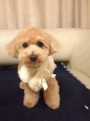 岡田はるこ 公式ブログ/2012-03-01 19:25:43 画像1