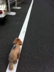 岡田はるこ 公式ブログ/☆ココ散歩☆ 画像1