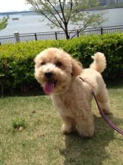 岡田はるこ 公式ブログ/2012-04-29 13:21:23 画像1