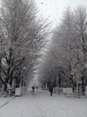 岡田はるこ 公式ブログ/祝日☆雪 画像2