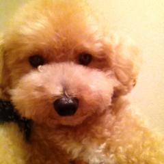 岡田はるこ 公式ブログ/2012-07-19 22:16:26 画像1