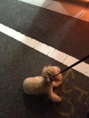 岡田はるこ 公式ブログ/お散歩の途中… 画像2