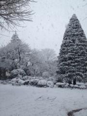 岡田はるこ 公式ブログ/祝日☆雪 画像1