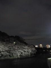 岡田はるこ 公式ブログ/夜桜♪ 画像2