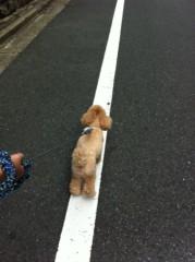 岡田はるこ 公式ブログ/☆ココ散歩☆ 画像2
