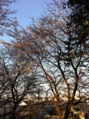 つばさ 公式ブログ/Everyday、カチューシャ☆〜(ゝ。∂) 画像2