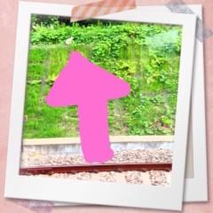つばさ 公式ブログ/車窓から♪ 画像1