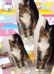 道重さゆみ(モーニング娘。) 公式ブログ/セラタン 画像2