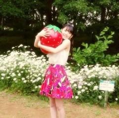 道重さゆみ(モーニング娘。) 公式ブログ/イチゴ摘み 画像2