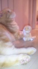 道重さゆみ(モーニング娘。) 公式ブログ/姉と猫 画像1