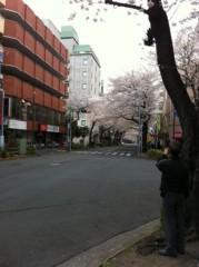 玉澤誠 公式ブログ/桜 画像1