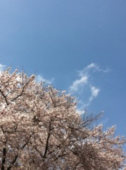 玉澤誠 公式ブログ/〜桜空〜 画像1