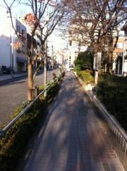 玉澤誠 公式ブログ/起きてみた♪( ´▽`) 画像1