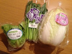 長澤奈央 公式ブログ/ミニ白菜! 画像1