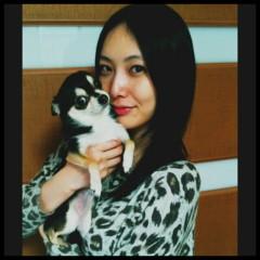 長澤奈央 公式ブログ/新年のご挨拶 画像1