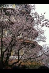 長澤奈央 公式ブログ/つぼみpart2 画像2