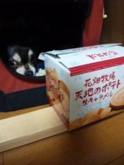 長澤奈央 公式ブログ/狙ってます。 画像1