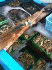 長澤奈央 公式ブログ/牡蠣と蟹。 画像1