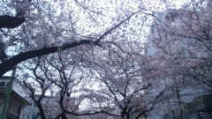 長澤奈央 公式ブログ/差し入れ。 画像3