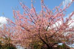 杉サトシ 公式ブログ/3/20@JAPANAID LIVE 画像1