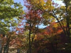 丸山圭子 公式ブログ/紅葉が綺麗なキャンパス! 画像1