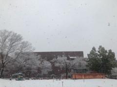 丸山圭子 公式ブログ/雪!! 画像1