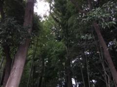 丸山圭子 公式ブログ/さて… 画像1