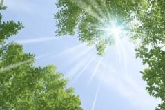 丸山圭子 公式ブログ/陽射しが暑い! 画像1