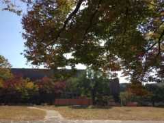 丸山圭子 公式ブログ/紅葉が綺麗なキャンパス! 画像2