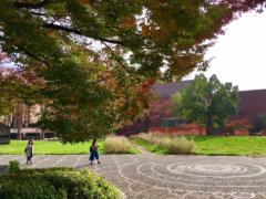 丸山圭子 公式ブログ/秋めいてきましたね。 画像1