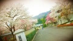 赤羽美夕希 公式ブログ/綺麗に咲いて 画像1