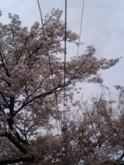 中野裕斗 公式ブログ/発売 画像1