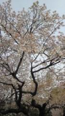 中野裕斗 公式ブログ/寒い 画像1