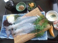 井手らっきょ 公式ブログ/イカにも九州 画像1