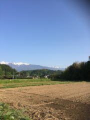 佐橋大輔(ガンリキ) 公式ブログ/中川村 画像1