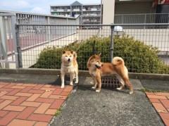 佐橋大輔(ガンリキ) 公式ブログ/朝 画像1