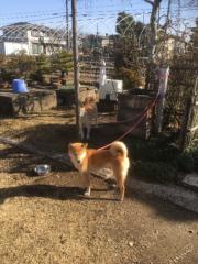 佐橋大輔(ガンリキ) 公式ブログ/お出かけ 画像1