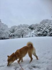 佐橋大輔(ガンリキ) 公式ブログ/今日は 画像1