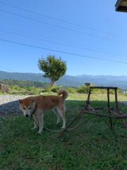 佐橋大輔(ガンリキ) 公式ブログ/こんにちは 画像1