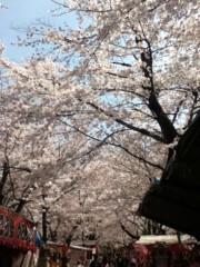 ほくろっぴ(ポンバシwktk学園) プライベート画像 桜咲いたら