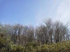 戸嶋 大 プライベート画像/3月旅行での写真 雪の木