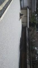 遠野実歌 公式ブログ/石庭です 画像2