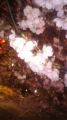 遠野実歌 公式ブログ/夜桜 画像3