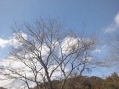 遠野実歌 公式ブログ/さんぽ 画像2