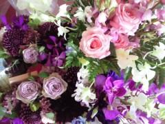 東ちづる 公式ブログ/新たな活動と花 画像1