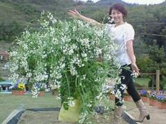 東ちづる 公式ブログ/因島� 画像1