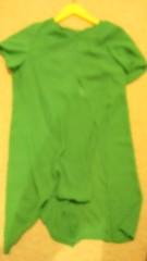 東ちづる 公式ブログ/グリーン!グリーン!グリーン! 画像3
